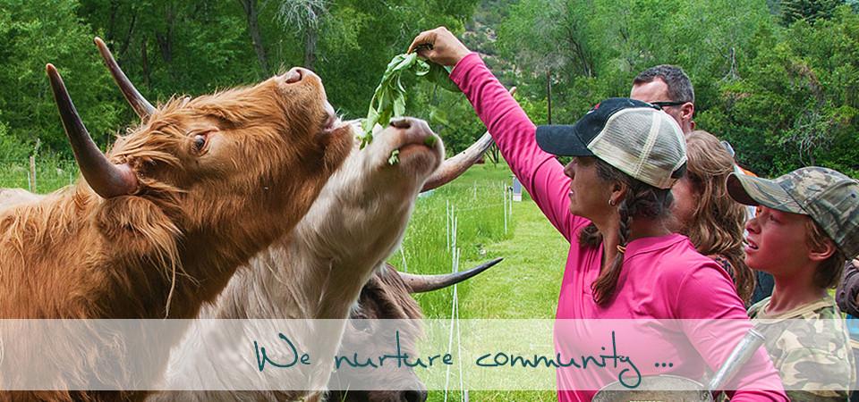 We nurture community