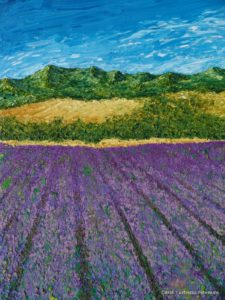 LavenderFields photo